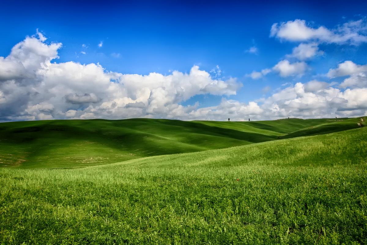 landscape_0197_01