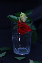glass_of_flowers