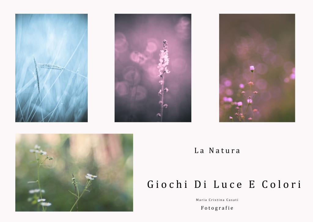 La Natura Giochi Di Luce E Colori